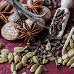 Traditional Roots Institute | Herbal Mixology | Herbal Mixologist | Dr. Glen Nagel | DIY medicine | herbal medicine | natural medicine | continuing education | continuing medical education | CE for naturopaths | bartending
