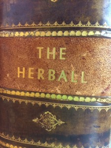 A 1633 copy of Gerard's Herball, from the Chilton Collection at the NCNM Library.