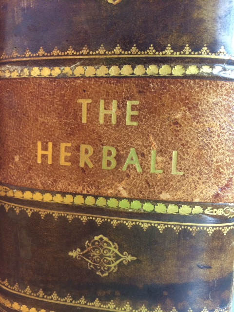 A 1633 copy of Gerard's Herball, part of the Chilton Collection at the NCNM Library.