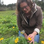 Missy Rohs | Traditional Roots Herbal Conference | herbal medicine | wildcrafting | Portland herbal conference | weedcrafting